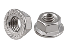 DIN 6923 Stainless Steel Flange Nut